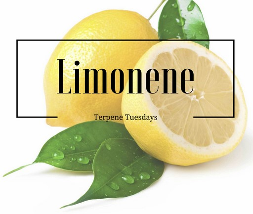 What is Limonene?