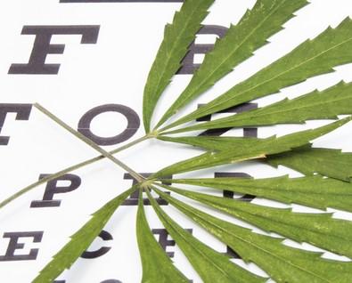 How does cannabis help glaucoma