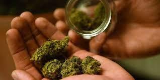 Are You Smoking Marijuana Too Often? | HuffPost