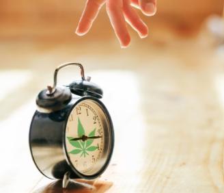 marijuana effect time